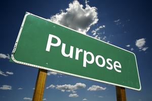 What is Your Purpose?